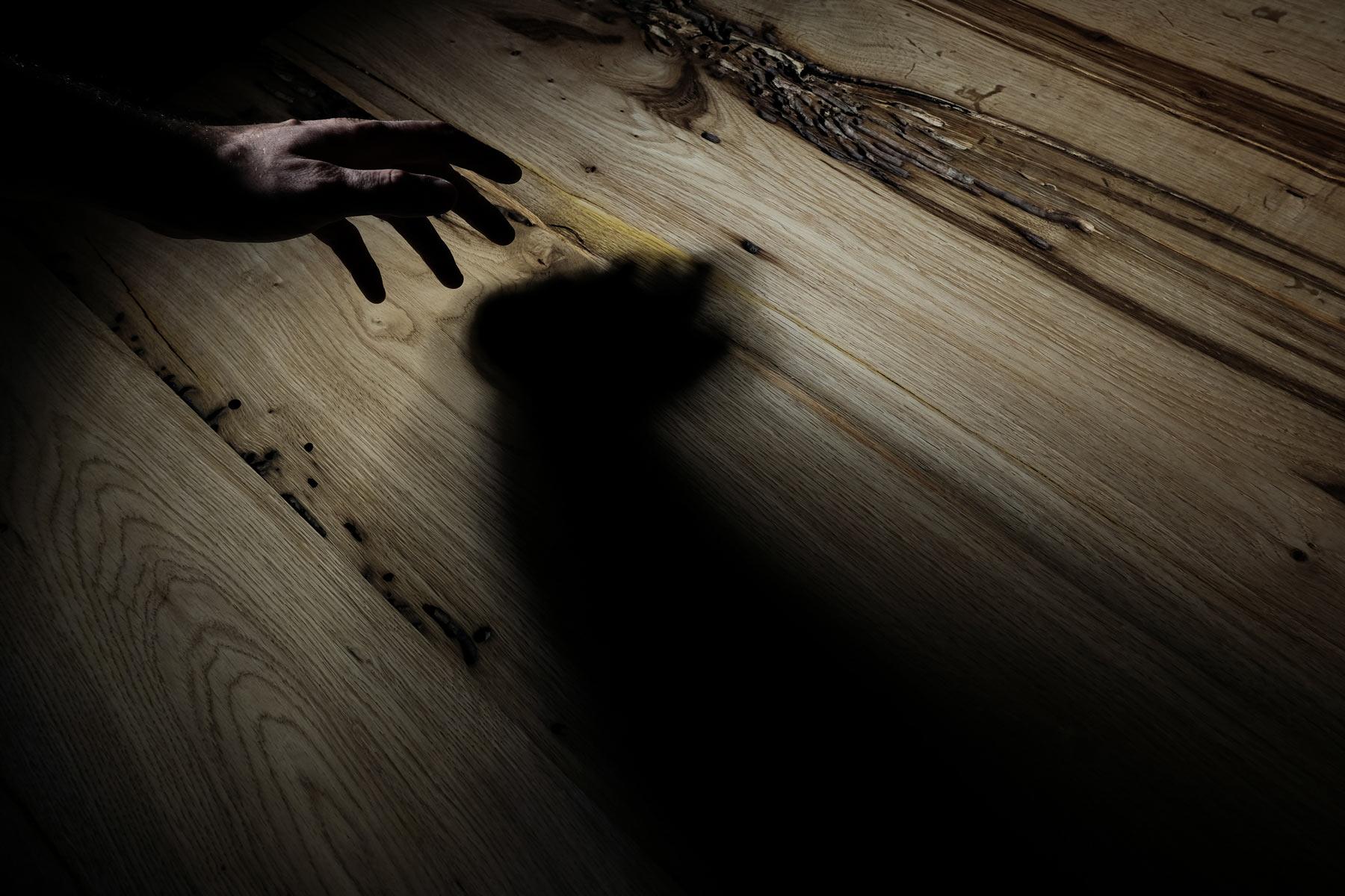 dettaglio legno briccole